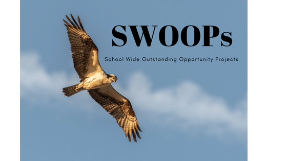 Picture of a hawk with the acronym SWOOP