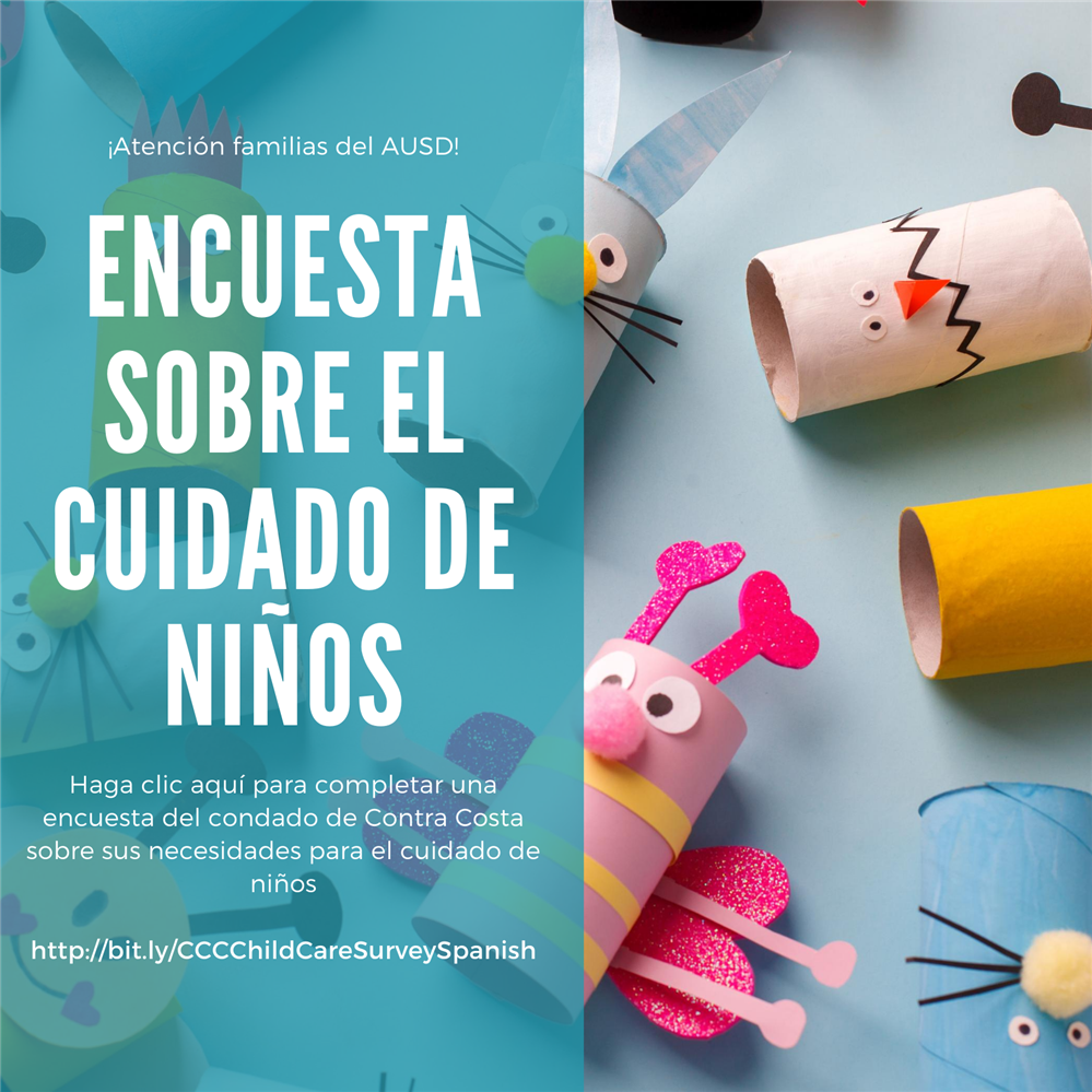 CCCChildCare Survey Spanish
